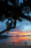 Palawan Island royalty free stock photography