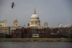 Palazzi e chiese - Londra St Paul Fotografia Stock