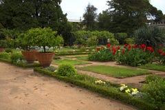 Palazzo多利亚Pamphili的庭院在热那亚意大利 免版税库存照片