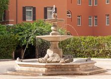 Palazzo Barberini, Rome, Italy. Fountain in the courtyard of Palazzo Barberini, Rome, Italy Stock Photos