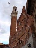 Palazzo Comunale image stock