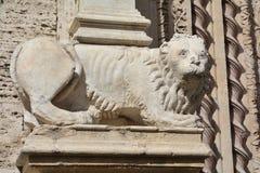Palazzo dei Priori大理石狮子雕象在佩鲁贾 免版税库存照片