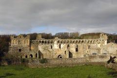 Palazzo dei vescovi della st Davids Immagine Stock
