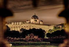 Palazzo di Hofburg alla notte Immagine Stock