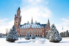 Palazzo di pace, Vredespaleis, sotto la neve fotografia stock libera da diritti