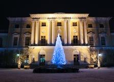 Palazzo di Pavlovsky ed albero di Natale fotografie stock libere da diritti