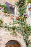 Palazzo di pietra decorato con i vasi da fiori e le piante dello scalatore Fotografia Stock