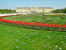 Palazzo di Schonbrunn, Vienna, Austria Immagini Stock