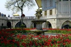 Palazzo di Topkapi, Costantinopoli, Turchia Immagine Stock Libera da Diritti