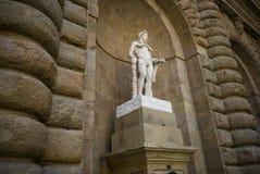 Palazzo Firenze di Pitti Fotografia Stock Libera da Diritti