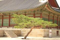 Palazzo interno di Gyeongbokgung Fotografia Stock