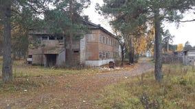 palazzo nei cavi Russia dell'erba del palo del telefono della foresta fotografia stock