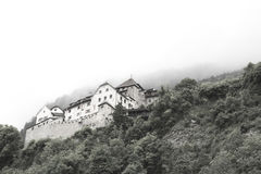 Palazzo nel Liechtenstein Fotografia Stock