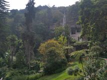 Palazzo nel palazzo degli alberi di verde di sintra Immagine Stock Libera da Diritti
