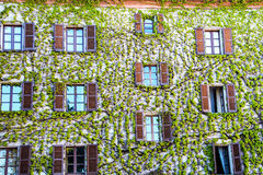 Palazzo nella città di Neive immagine stock