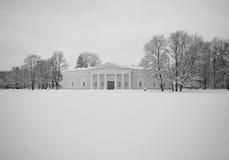 Palazzo nella fiaba della neve Immagine Stock