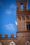 Palazzo Pubblico in Siena Royalty Free Stock Image