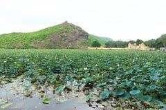 Palazzo su un bundi India del lago Fotografia Stock