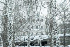 Palazzo in un boschetto della betulla di inverno sopra il passaggio fotografia stock libera da diritti
