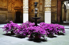 Palazzo Vecchio courtyard in Florence Royalty Free Stock Image