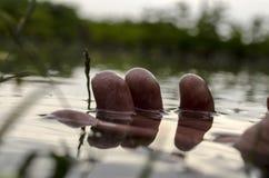Palców dotyków wody zakończenie up lub tonięcie mężczyzna pojęcie Ręka zamknięta up w wodzie Selekcyjna ostrość Fotografia Stock