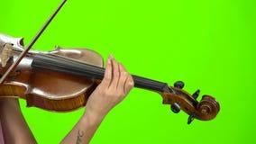 Palce muzyk zaciskają sznurki na skrzypce zielony ekran z bliska zdjęcie wideo