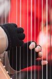 Palce szczypa sznurki na harfie w Montmartre Zdjęcia Royalty Free
