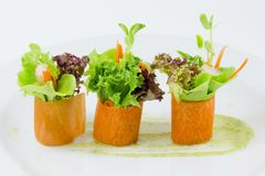 Palcowego jedzenia marchwiana sałatkowa rolka Fotografia Stock