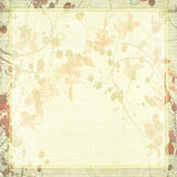 Pale Antique Floral Background Stock Photography