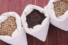 Pale, caramel, chocolate malt in a bags. Craft beer brewing from. Grain barley malt in process. Ale or lager from pale or dark pilsner malt. wooden background Stock Photography