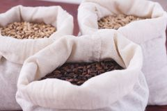 Pale, caramel, chocolate malt in a bags. Craft beer brewing from. Grain barley malt in process. Ale or lager from pale or dark pilsner malt. wooden background Stock Photo