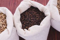 Pale, caramel, chocolate malt in a bags. Craft beer brewing from. Grain barley malt in process. Ale or lager from pale or dark pilsner malt. wooden background Stock Image