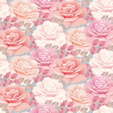 Pale color rose pattern Stock Photography