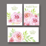 Pale color tender rose flowers card set. Stock Photography