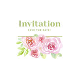 Pale color tender rose flowers. card template Royalty Free Stock Photography