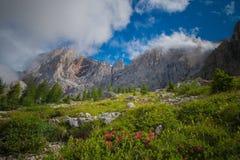 pale di圣马蒂诺, Dolomiti 库存照片