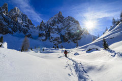 Pale di San Martino Natural Park, Italy Stock Photography