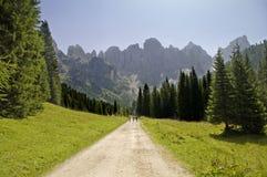 Pale di San Martino, Trentino, Italia Immagini Stock Libere da Diritti