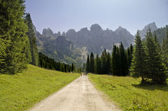 Pale di San Martino,Trentino,Italy. A nice view of alpine panorama Royalty Free Stock Images