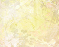 Pale Flower Art on Paper Background Stock Photos