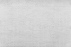 The pale gray textured surface of a brick wall Stock Photography