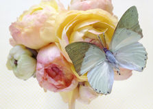 Green butterfly on pastel flowers Stock Photography