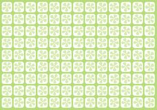 Pale green flowery grid Royalty Free Stock Photo