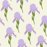 Pale Iris-bloemen op een heldergroene achtergrond Bloemen naadloos Royalty-vrije Stock Fotografie