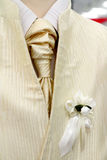 Pale jacket and tie. Close-up of a pale jacket and tie on the manikin on wedding expo Stock Photo