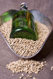 Pale Malt and Bottle. Pale malt barley, an ingredient for beer, with a green beer bottle Stock Photos