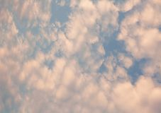 Pale pastel sky with fluffy clouds. Pastel sky with white cumulus clouds royalty free stock photos
