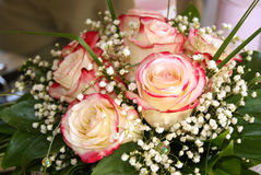 Pale pink bridal bouquet of roses. With small white flowers Royalty Free Stock Photos