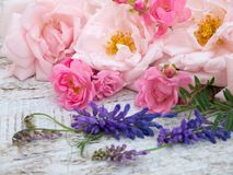 Pale pink and bright pink roses and tufted vetch Stock Photos