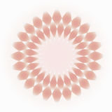 Pale pink-cream decorative circular ornament Royalty Free Stock Photo